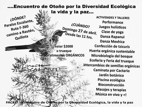 Afiche Talleres Encuentro Abril!